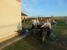 Piknik militarny-3
